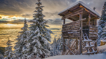 Schneelandschaft mit Hochsitz im Wald