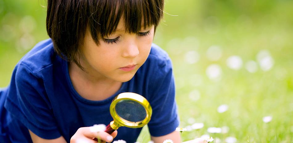 Kind mit Lupe auf der Wiese