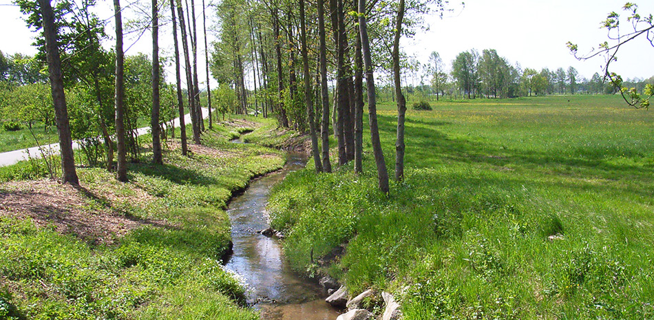 Bach und grüne Wiese