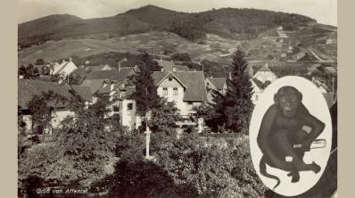 """Affental, Gasthaus """"Auerhahn"""", um 1930"""