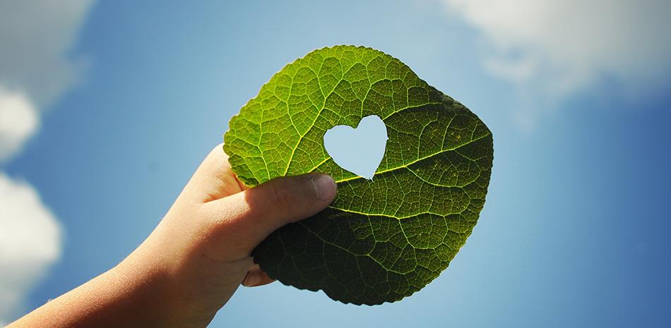 Hand hält Blatt mit ausgestanztem Herz