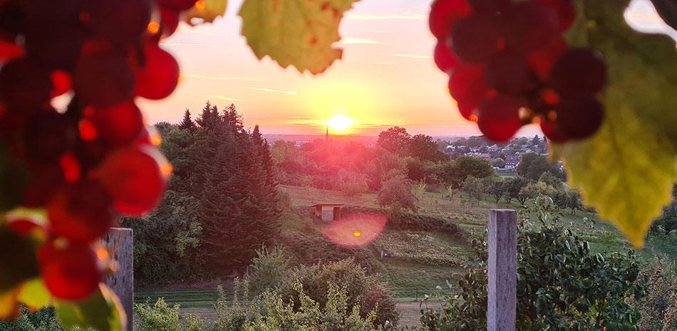 Blick über Bühl bei Sonnenuntergang